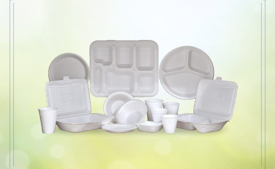 Disposable Thermocol Plates 02-09-2017_8-min